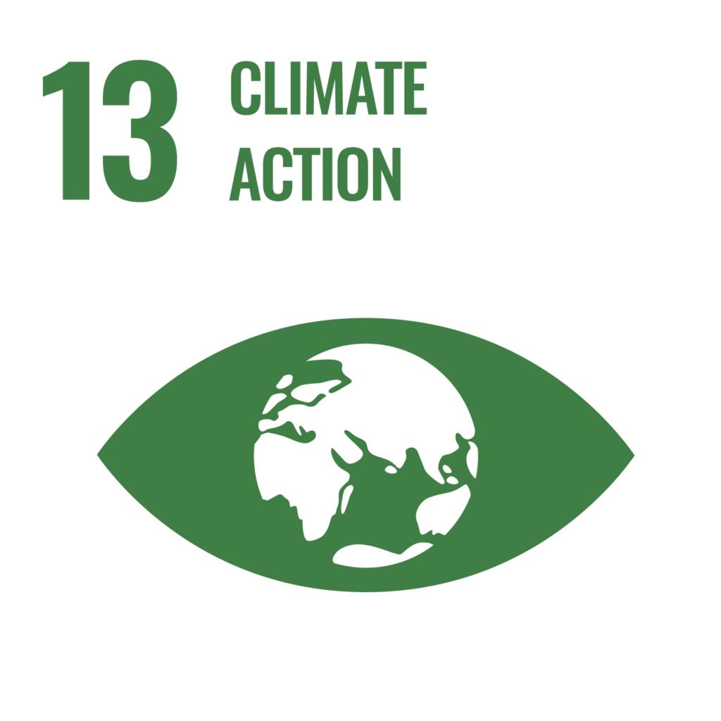 Wenalyze ODS 13 acción climática