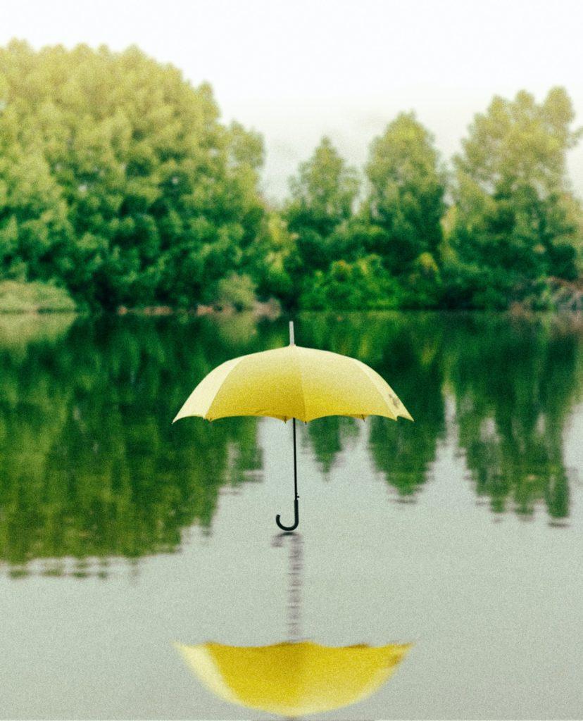 sustainable insurance with wenalyze